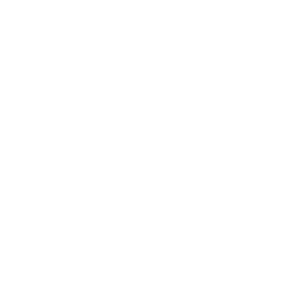 logo blanco smart buys consulting